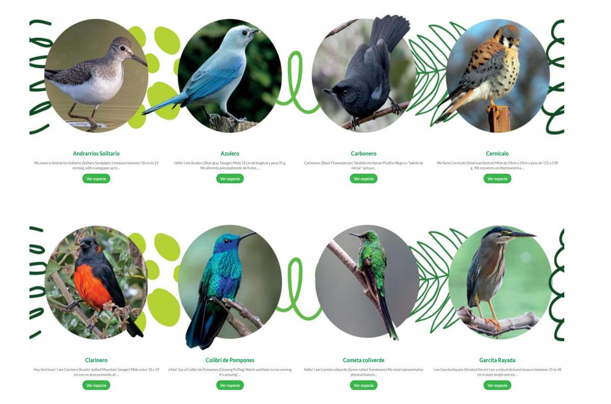 Biodiversidad en el CLN